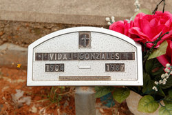 Vidal H Gonzales