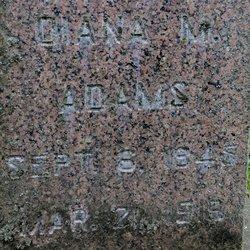 Diana M Adams