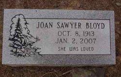 Joan <I>Sawyer</I> Bloyd