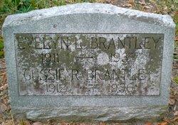 Evelyn L. Brantley