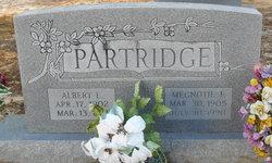 Albert Eugene Partridge