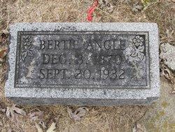 Bertie <I>Jennings</I> Angle