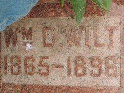 William David Wilt