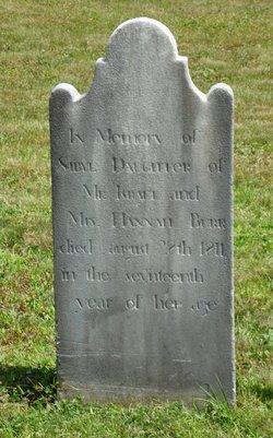 Sybil Burr