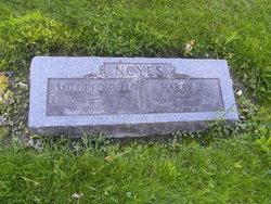 Harry J. Noyes