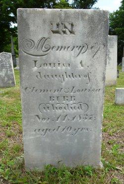 Louisa A Burr