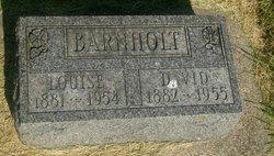 David W Barnholt