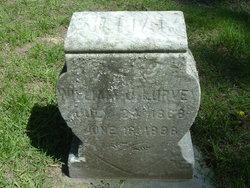 William J Lurvey