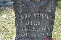 Jacob Chesley Bishop