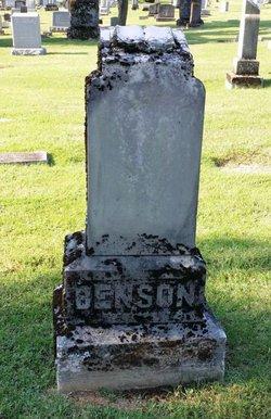 Sarah Elizabeth <I>Fly</I> Benson