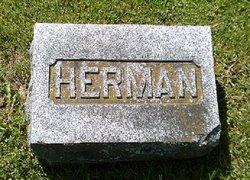 Herman Taylor Taft