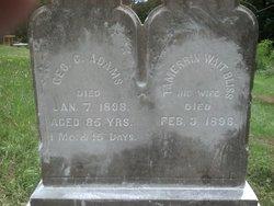 George C Adams