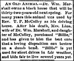 Dr William Marshall
