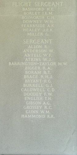 Flight Sergeant Ian Edward Maitland Borley