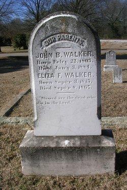 Eliza Saffold <I>Fannin</I> Walker