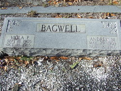 Andrew M. Bagwell