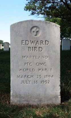 Edward Bird
