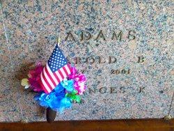 Harold B Adams
