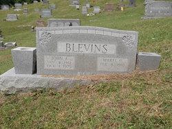 John A. Blevins