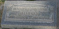 Andrew Farrell Adams