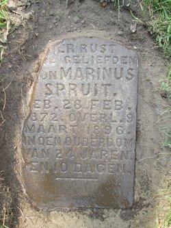 Marinus Spruit