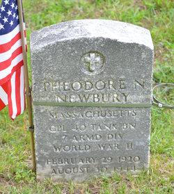 Theodore N. Newbury
