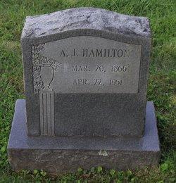 Andrew Jackson Hamilton