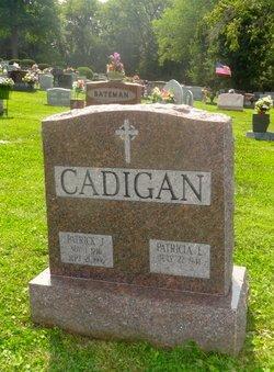 Patrick J Cadigan