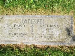 Rev. David Janzen