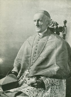 Image result for cardinal henry manning
