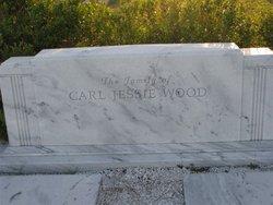 Eva Eveline <I>Davis</I> Wood