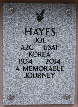 Joe Hayes
