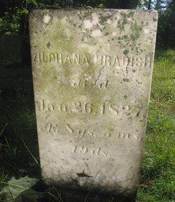 Zilphana Bradish