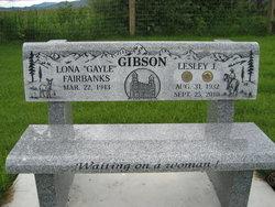 Lesley J Gibson