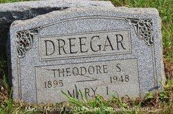 Theodore S Dreegar