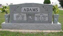 Elbert Cleo Adams