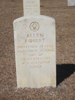 Allen Robert Culpepper