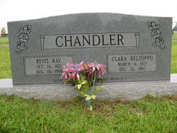 Clara <I>Delzoppo</I> Chandler