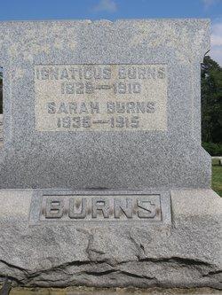 Sarah <I>Kinney</I> Burns