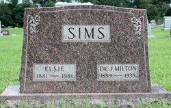 Sarah Elsie <I>Johnson</I> Sims