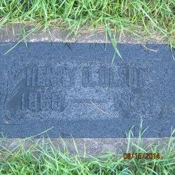 Henry Olson