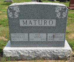 Nicholas J Maturo