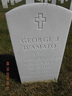 George J D'Amato