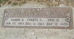 Eric D Johnson