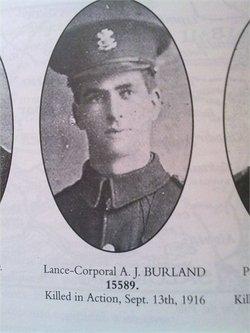 L-Corp Alfred John Burland