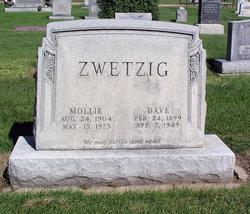 """David """"Dave"""" Zwetzig"""