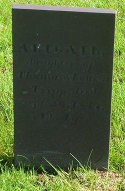 Abigail Tripp