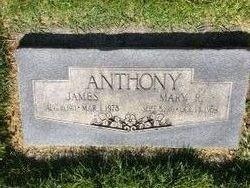 Mary <I>McCoskery</I> Anthony