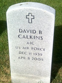 David B Calkins