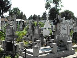 Bolovani Cemetery
